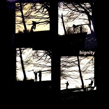 Bignity - Van der Want & Letcher