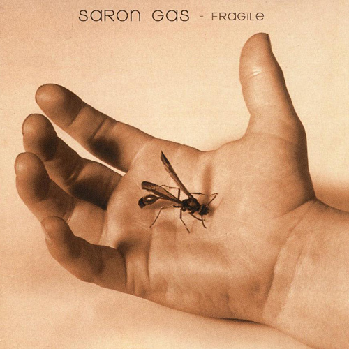 Fragile - Saron Gas